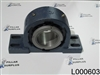 Timken QM Blue Brute  Pillow Block Bearing 22220 DVPF22R315SM