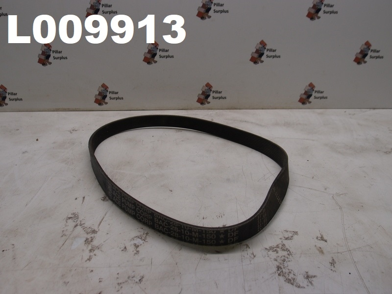 ACE PUMP BAC-28-10M Replacement Belt